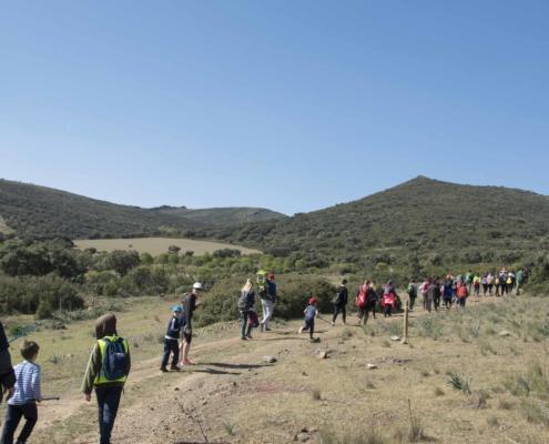 rutas sierra valdehierro madridejos