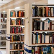 biblioteca madridejos