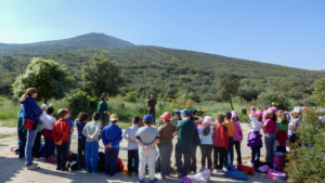 actividades aula naturaleza madridejos