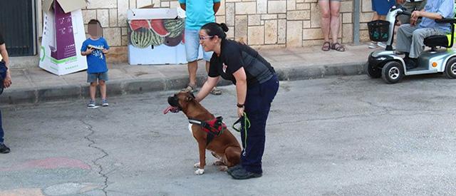 exhibicion perros rescate proteccion civil