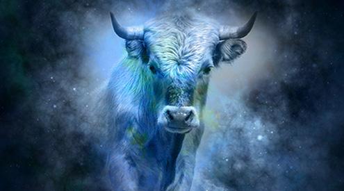toros en madridejos