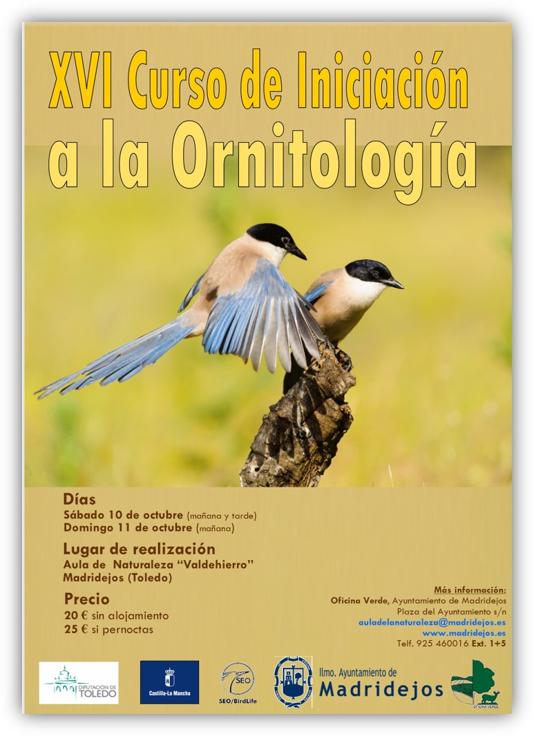 xvi curso ornitologia madridejos